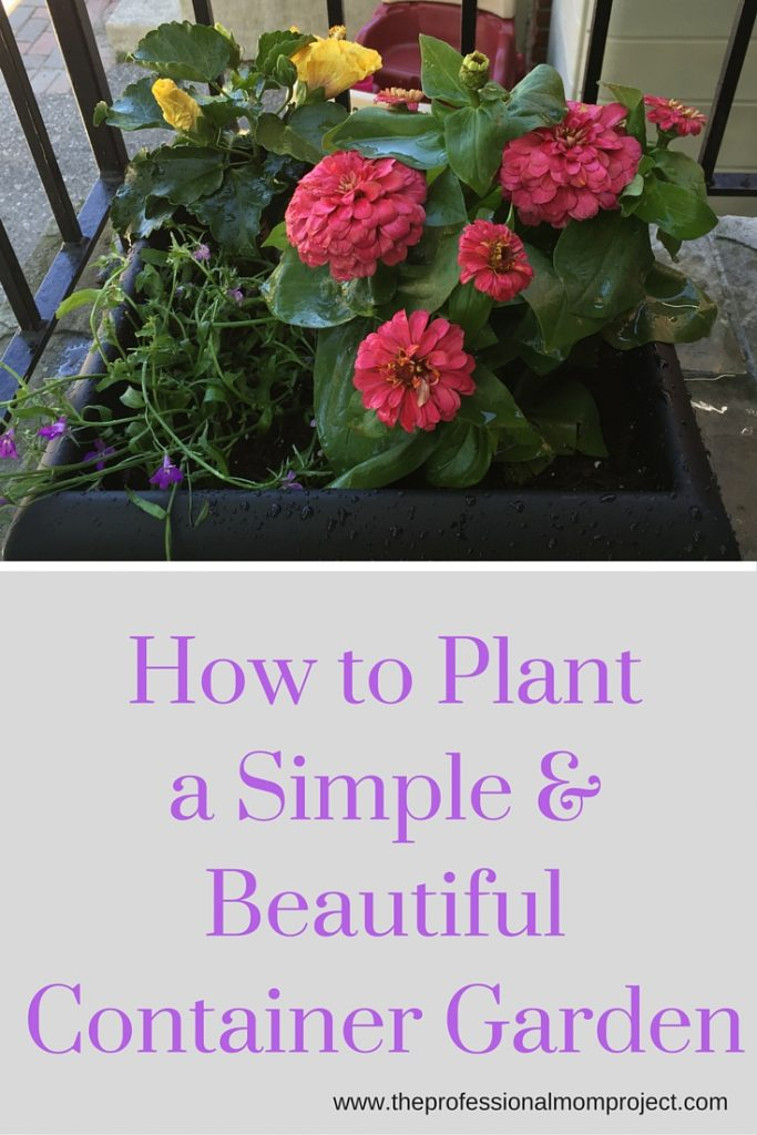 Learn how to plant a simple and beautiful container garden. Take a look at this step by step guide from The Professional Mom Project.