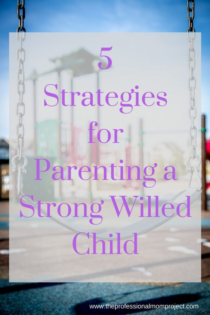 Parenting can be rough! Check out these 5 strategies for parenting a strong willed child from The Professional Mom Project. These tips can help with kids at various ages and stages.